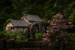 Springtime Mill
